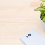 セゾン投信 スポット購入と積立投資はどっちがいいの?ブログ視点での具体例も。